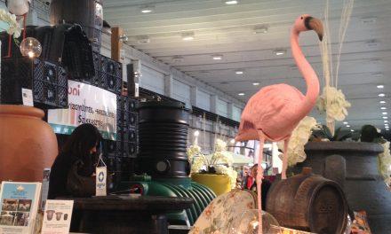 Műbagoly és rózsaszín flamingó