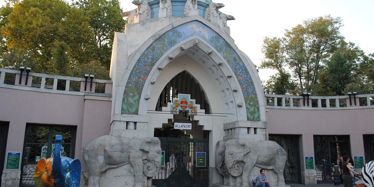 A legtutibb nyári program a Zoo Tábor
