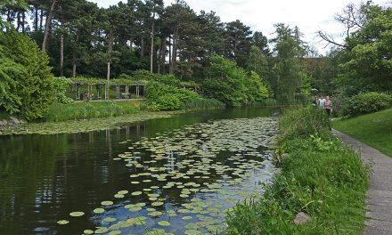 Belvárosi parkok az egykori városfal helyén – Koppenhága