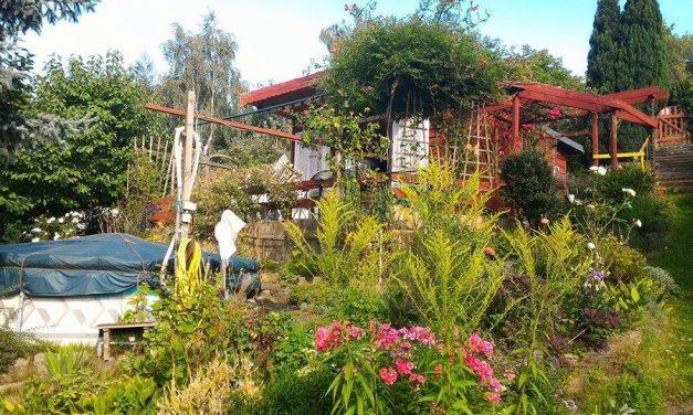 Saját kert házzal 80 ezerért