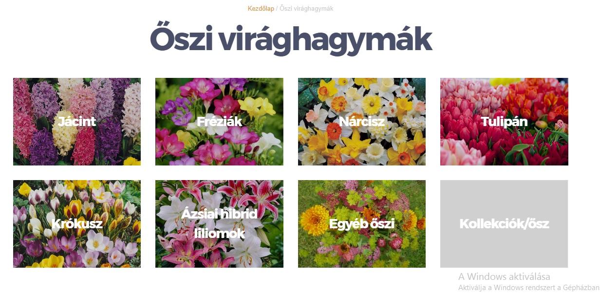 Megérkezett az őszi kínálat a kertészetekbe