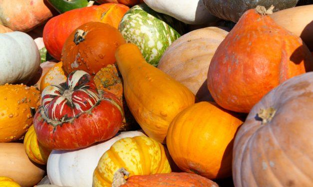 Őszi vitaminbombák, hogy átvészeld a telet