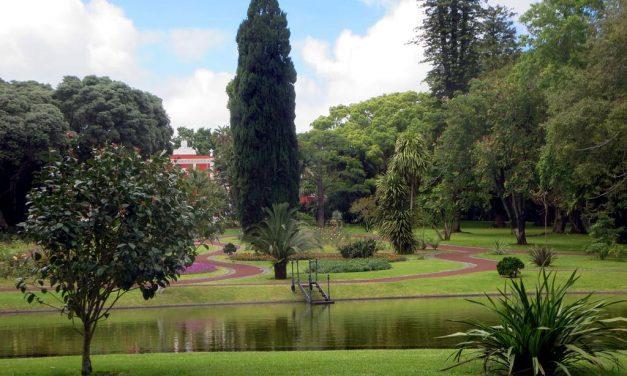 Biztos jobb döntéseket hoz egy kormány, ha egy ilyen csodás kert közepén ülésezik