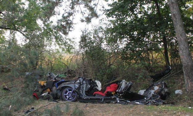 Kivágná az útmenti fákat, mert nekicsúszott egy autós és meghalt