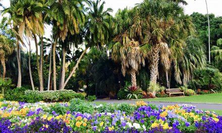 Tudod-e, hogy melyik városban áll az operaház egy botanikus kert közepén?
