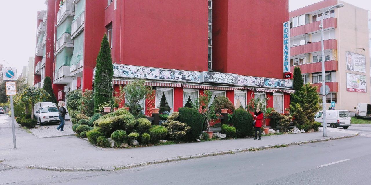 Menő zöldtető és manikűrözött örökzöldek Zalaegerszegen