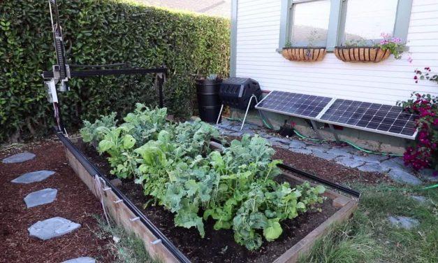 Jönnek a robotok és elveszik tőlünk a kertészkedést