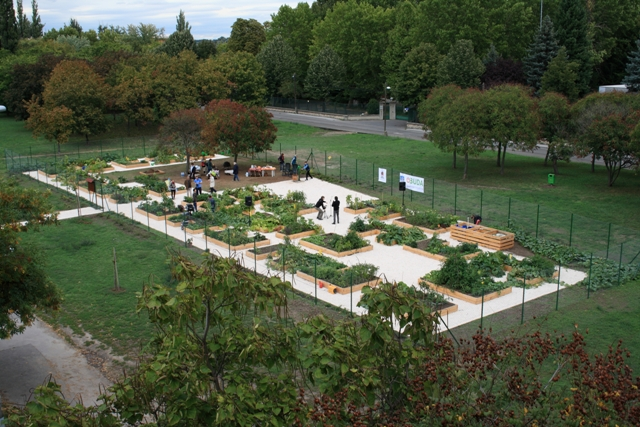 Ide mehetsz kertészkedni, ha nincs sajátod
