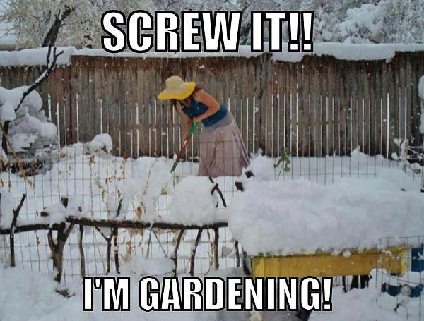 Jön a hó és beteríti a kertünket, mi pedig répába énekeljük bánatunk