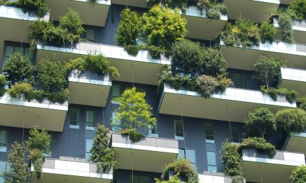 Most megtudhatod, milyen lesz a jövő zöld városa