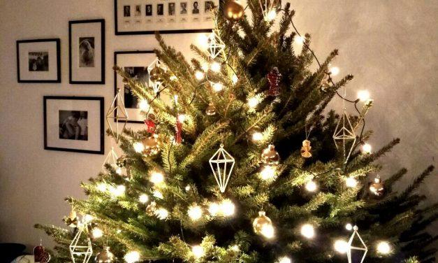 Állj ki a sorból, menőkarácsonyfa-körkép!