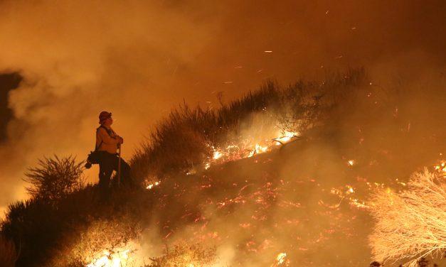 Tűzvészből mentett ki egy férfi egy nyulat – videó