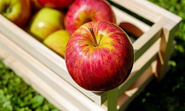 Így a legjobb tárolni az almát télen