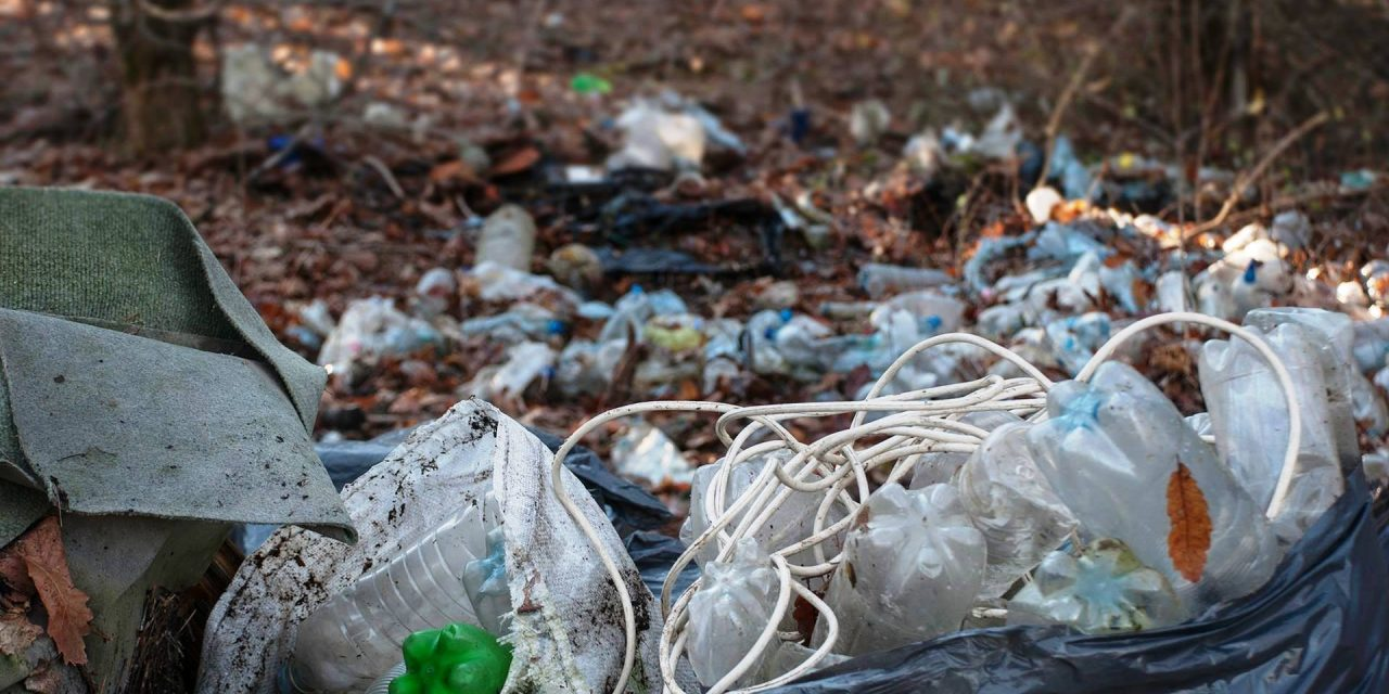 2030-ra kötelező lehet az újrahasznosítható műanyag-csomagolás