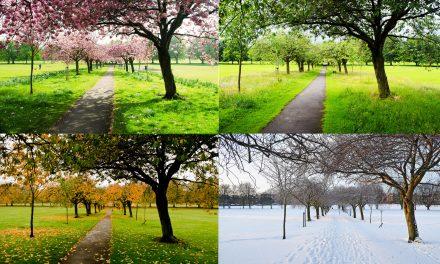 A évszakok csodás változásai hét képben