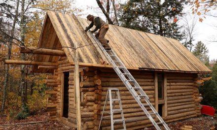 A semmiből épített magának faházat az erdő közepén