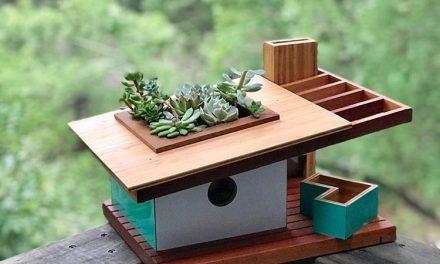 Modern építészet inspirálta madárházak