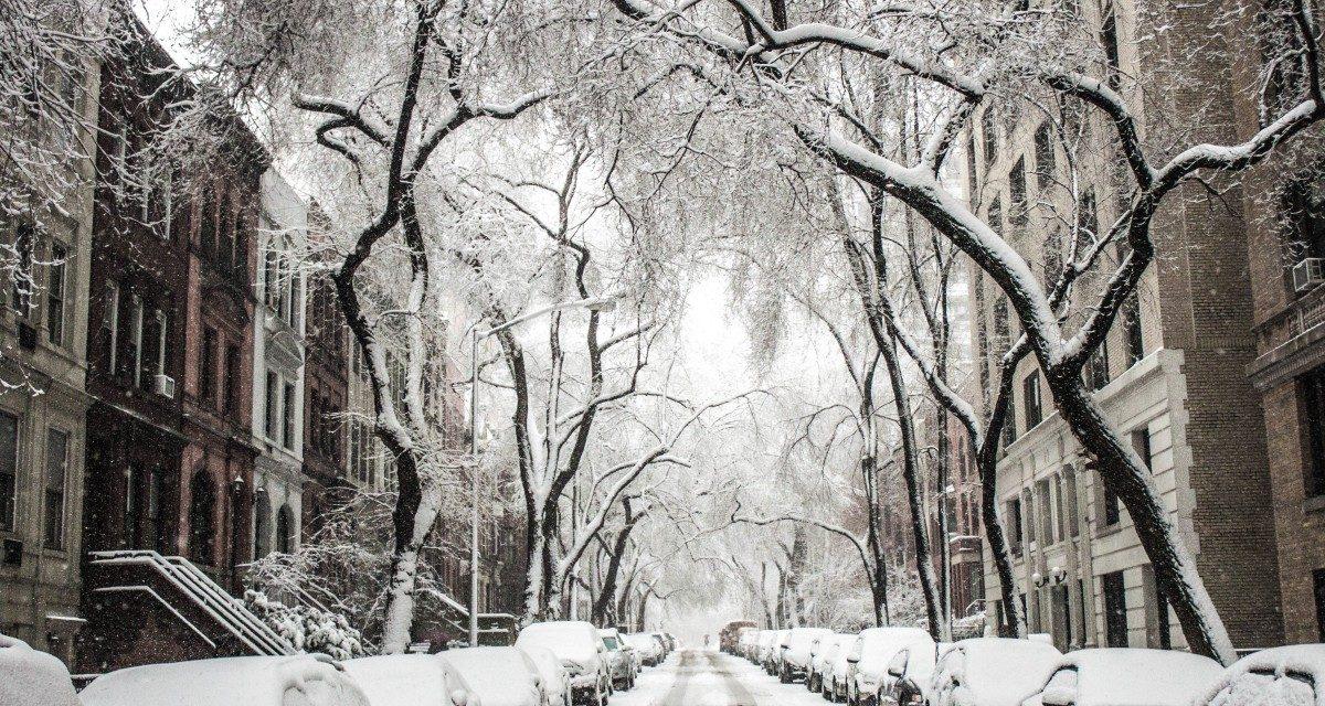 Utcai fa kérésre – ilyet itthon is kellene