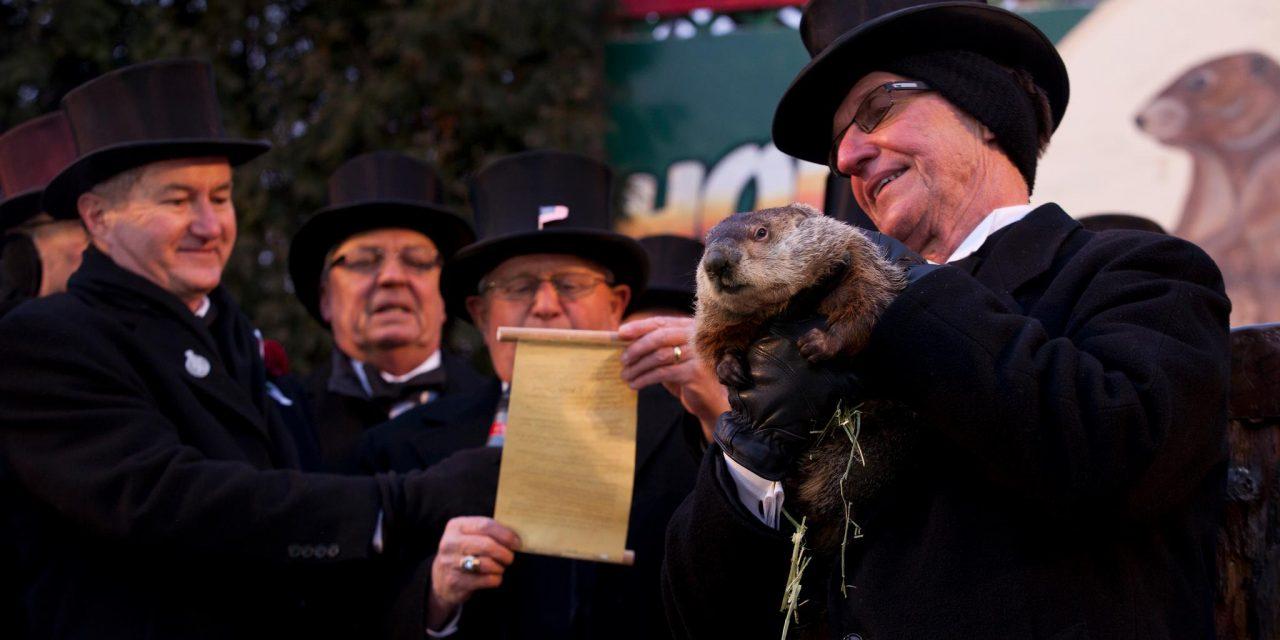 Régen még sündisznó volt Punxsutawney Phil, az időjós mormota