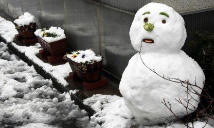 Hogy építsünk tökéletes hóembert? Tessék?!