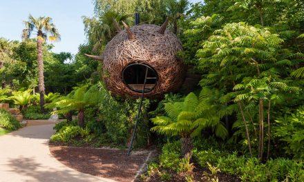 Varázskert óriásgubóval, impozáns park és egyszerű virágoskert mérkőzött egymással