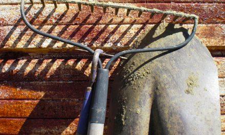 Így távolítsd el a rozsdát a kerti eszközökről