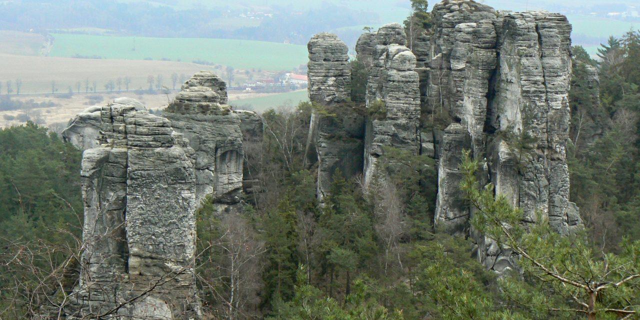 10 dolog, amit nem tudtunk a Rejtekadó Erdőről