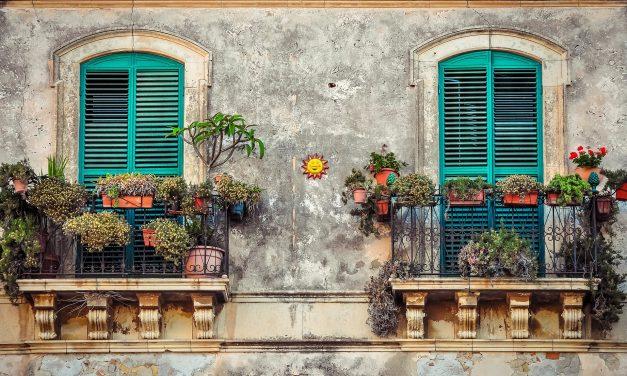 Kéne valami növény a teraszra. Illetve az erkélyre. Vagy hova is?