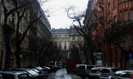 Újabb fasor megy a kukába Budapesten – Mennyire sajnáljuk?