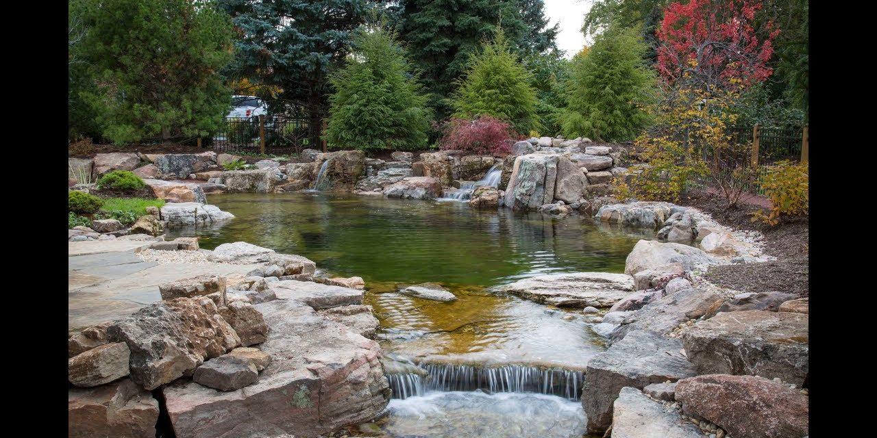 Szeretne egy medencét a kertbe? Mit szólna inkább egy tóhoz, amiben úszni is lehet?