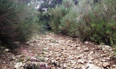 Amikor a kellemes találkozik a hasznossal: építs kiszáradt patakmedret a kertben!