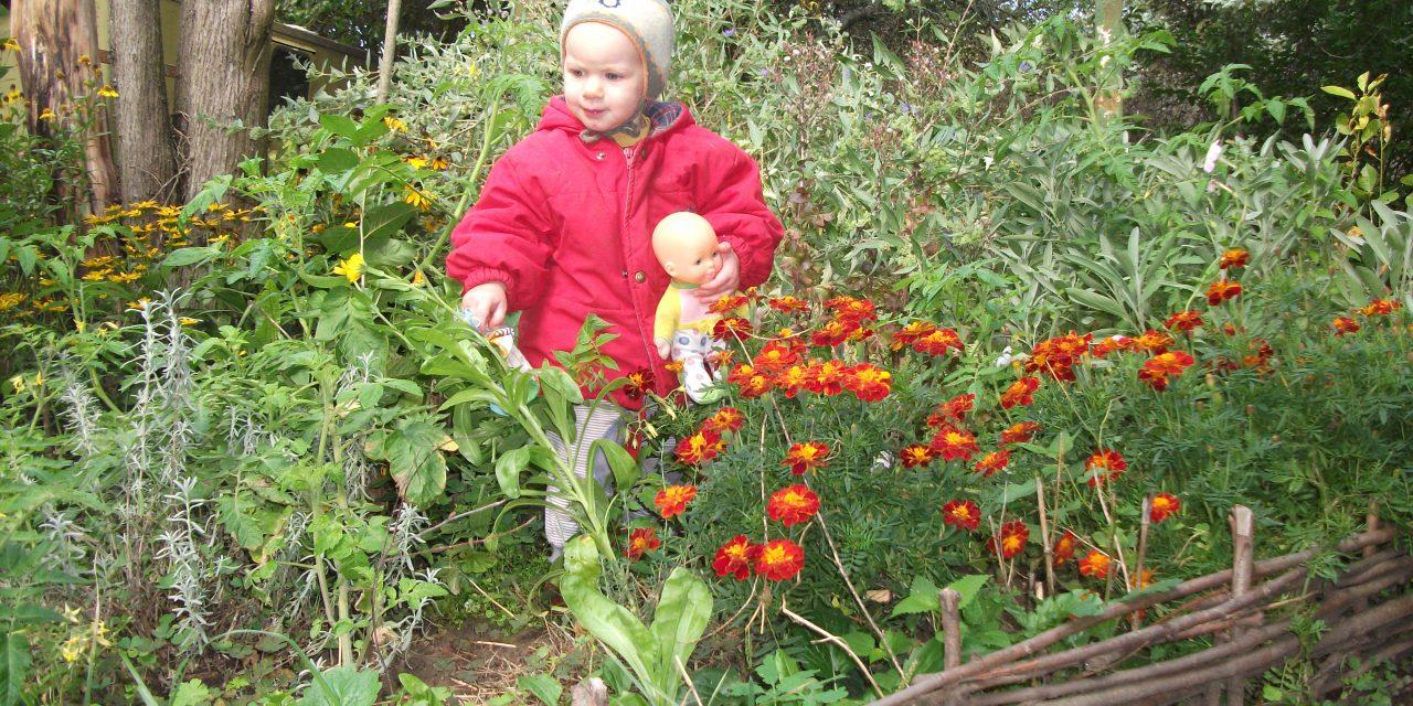 kert és gyerekek)