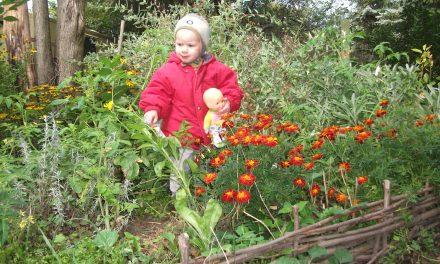30 tipp a gyerekbarát kertért
