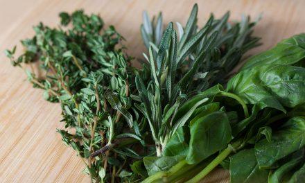 Kertészkedés a lakásban: így épül a mini fűszerkert