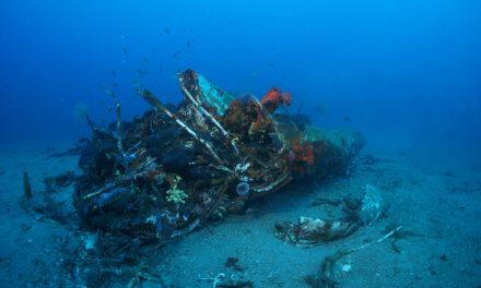 Gyorsabban növekszik a csendes-óceáni műanyaghulladék mennyisége, mint azt eddig gondolták