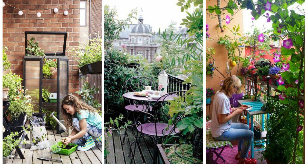 Ültesse tele növénnyel az erkélyt, az ablakpárkányt, vagy a gangot és nyerjen!