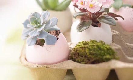 A tojáshéj ezer arca: húsvéti dekoráció az ünnepi asztalon