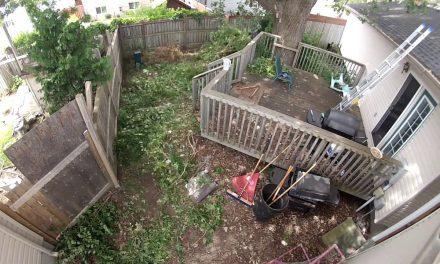 Egy elvadult hátsókert fájdalmas átváltozása
