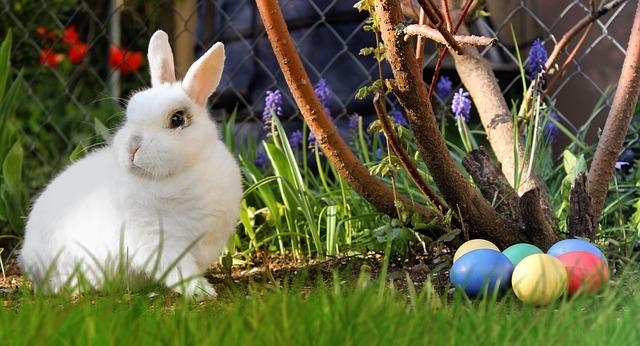 10 dolog, amit tudnod kell, mielőtt húsvéti nyuszival leped meg a gyereket