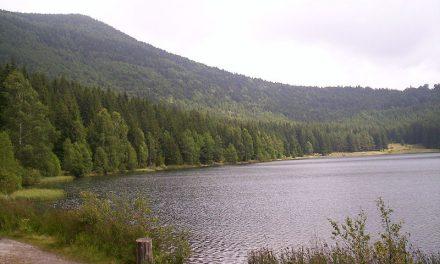 Megtiltották a fürdőzést a Szent Anna-tóban