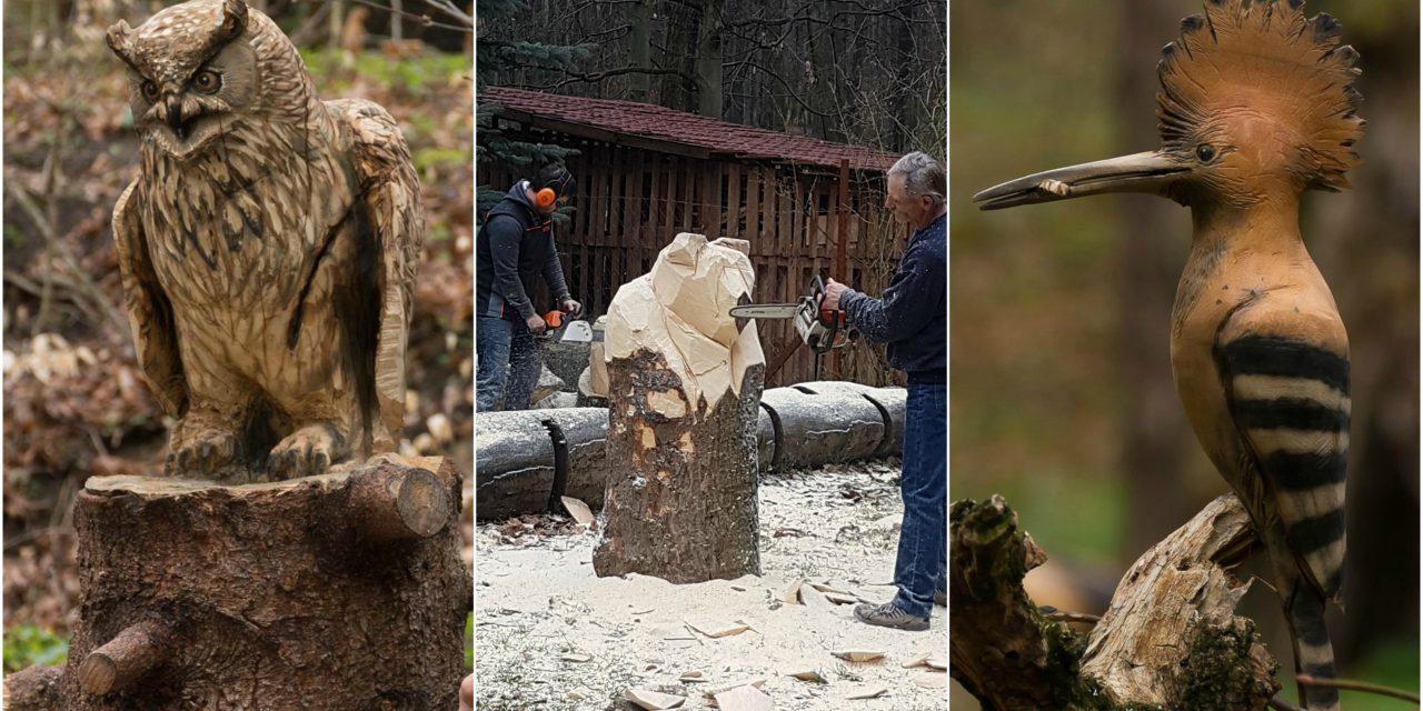 Egy uhuval nyerte el az Erdő Szobrásza címet