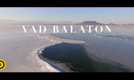 Holnaptól a mozikban: Vad Balaton