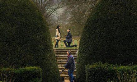 Egy kertész trollkodta szét a lánykérés nagy pillanatát