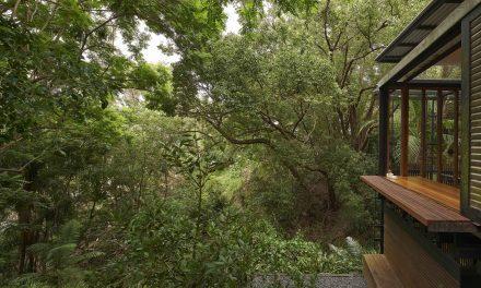Dizájner luxusház, vagy remetelak az erdő közepén?