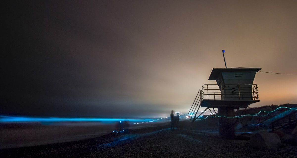 Világoskék fényben fluoreszkál San Diego vízpartja