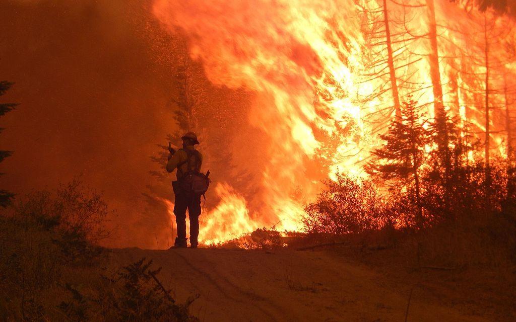 Vegyük el a tűzoltók munkáját!