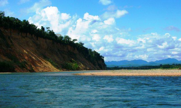 124 új fajt találtak a bolíviai Madidi Nemzeti Parkban