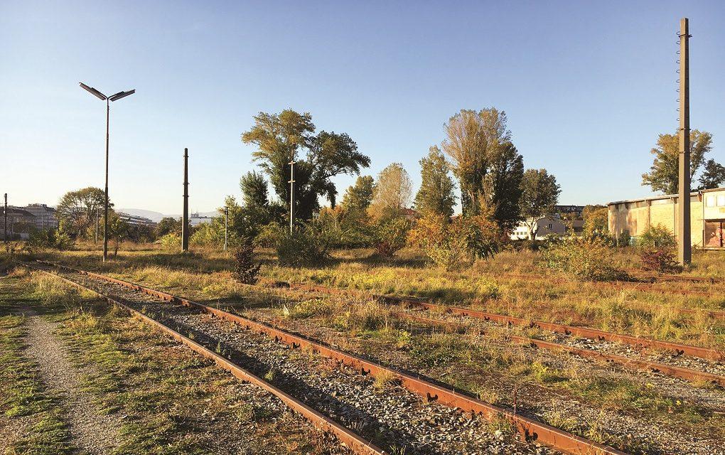 A lakók közreműködésével alakítanak ki új parkot Bécsben