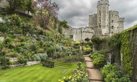 Páros lábbal tapossa az egész királyi család: a windsori kastély kertje