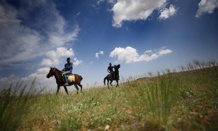 Már lóháton is bejárhatók a Visegrádi-hegység legszebb részei